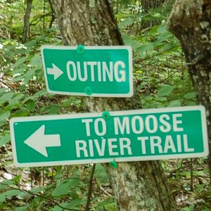 Near Outing and Moose River